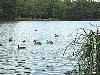 Base nature et loisir des Eydoches à Faramans (à 5km)
