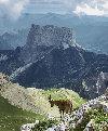 Parc naturel régional du Vercors (à 67km)