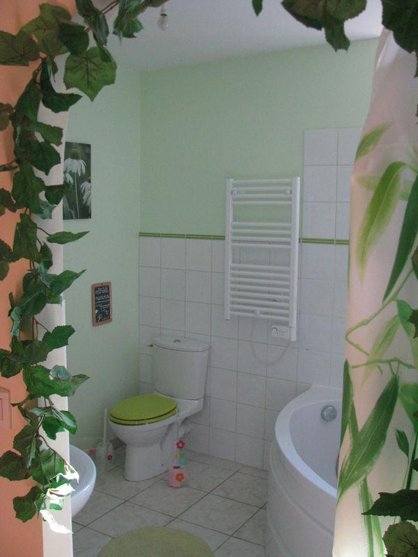 """chambre """"Forêt""""  la salle de bain (gîte pour séminaire)"""