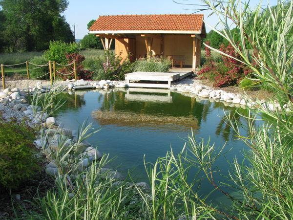 végétation du biotope avec le poolhouse
